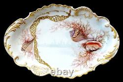 1890's LANTERNIER Antique LIMOGES Porcelain SEASHELL Hand Painted 18.5 Platter