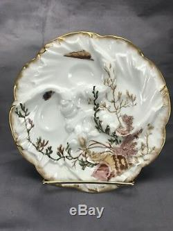 (6) Chas Field Haviland Limoges Hand Painted Wave Mold Sea Life Oyster Plates