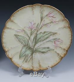 6 LIMOGES Satin Finish Hand Painted Plate Plates Haviland 19th Cent. 1876-1880