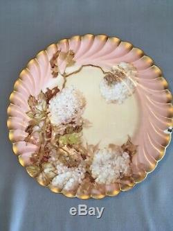 Antique Hand Painted Signed Franz A. Bischoff Limoges Plate Hydrangeas Collector