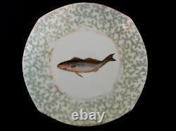 Antique Tressemann & Vogt T&V Handpainted Fish Platter & Plates Limoges France