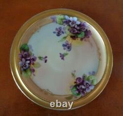 Bavaria Chocolate Tea Pot & Limoges Trivet, Handpainted Violets, Schindler