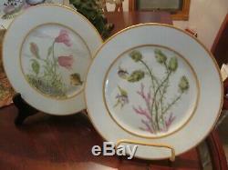 Haviland Limoges Porcelain Hand Painted Game Fish Platter & Plate Set 19th C