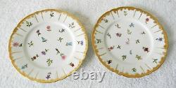 Haviland Limoges set of five hand painted plates flowers circa 1889