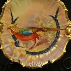 Limoges Coronet Coiffe Plate Hand Painted Sena Golden Pheasant withGold 1906-1914