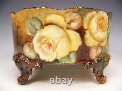 Limoges Hand Painted Roses Ferner Vase