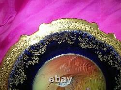 Rare Antique Limoges Bird Cabinet Plate Hand Painted De Solice 9.5