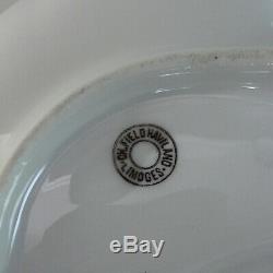 Set 6 Antique Haviland Limoges Oyster Hand Painted Plates 19 c. Plus one
