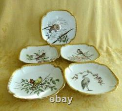 Set of 5 Antique T&V Limoges France Hand Painted Plate/Dish Bird With Gold Gilt