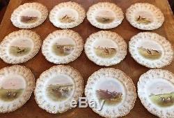 12 Assiettes De Faisans Peints À La Main Vintage T & V De Limoges Vers 1890-1900