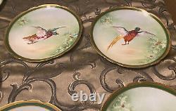 Ancien Plateau Peint À La Main De Limoges & 11 Assiettes De Dîner Jeu D'oiseaux 1908-1914