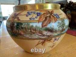Antique Limoges France Hand Painted Center Bowl Porcelaine