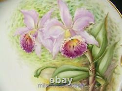 Belle Limoges Peinture À La Main Orchidées 12 Charger Cake Plate Artist E. Mclean