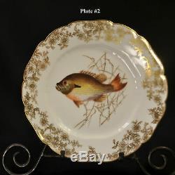 Cfh / Gdm Haviland Limoges Set 6 Assiettes De Poisson 9 1/8 Peint À La Main Withgold 1882-1890