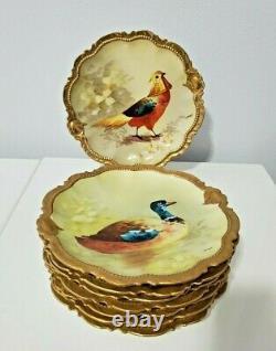 Ensemble De Desserts D'oiseaux Peints À La Main Par Coronet Limoges