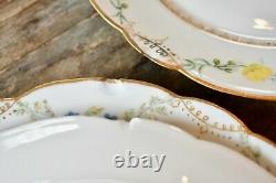 Ensemble Haviland Limoges France Assiettes Florales 10 Porcelaine Peinte À La Main