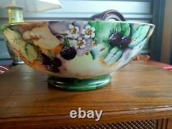 Georgeous Antique Limoges D&c France Hand Painted Footed Punch/fruit Bowl