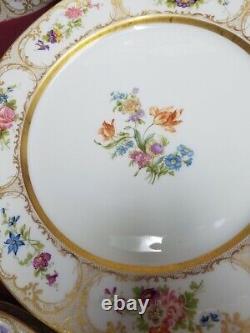 Guerin, William Peint À La Main Limoges France Dresde Fleurs Set 12 Assiettes Dîner