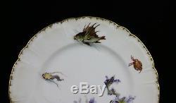 H & Co. L France Haviland Limoges Sea Life Poisson Coquille Coquille Peinte À La Main 9.5 Assiette