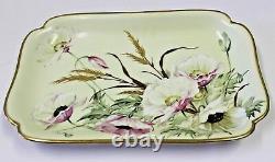 Limoges Haviland H & C Depose, France-1887 Porcelaine Peinte À La Main De Fleurs Plateau