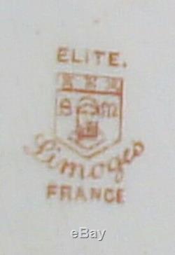 Plat Grand Et Impressionnant De Limoges. Peinte À La Main. Début 20e